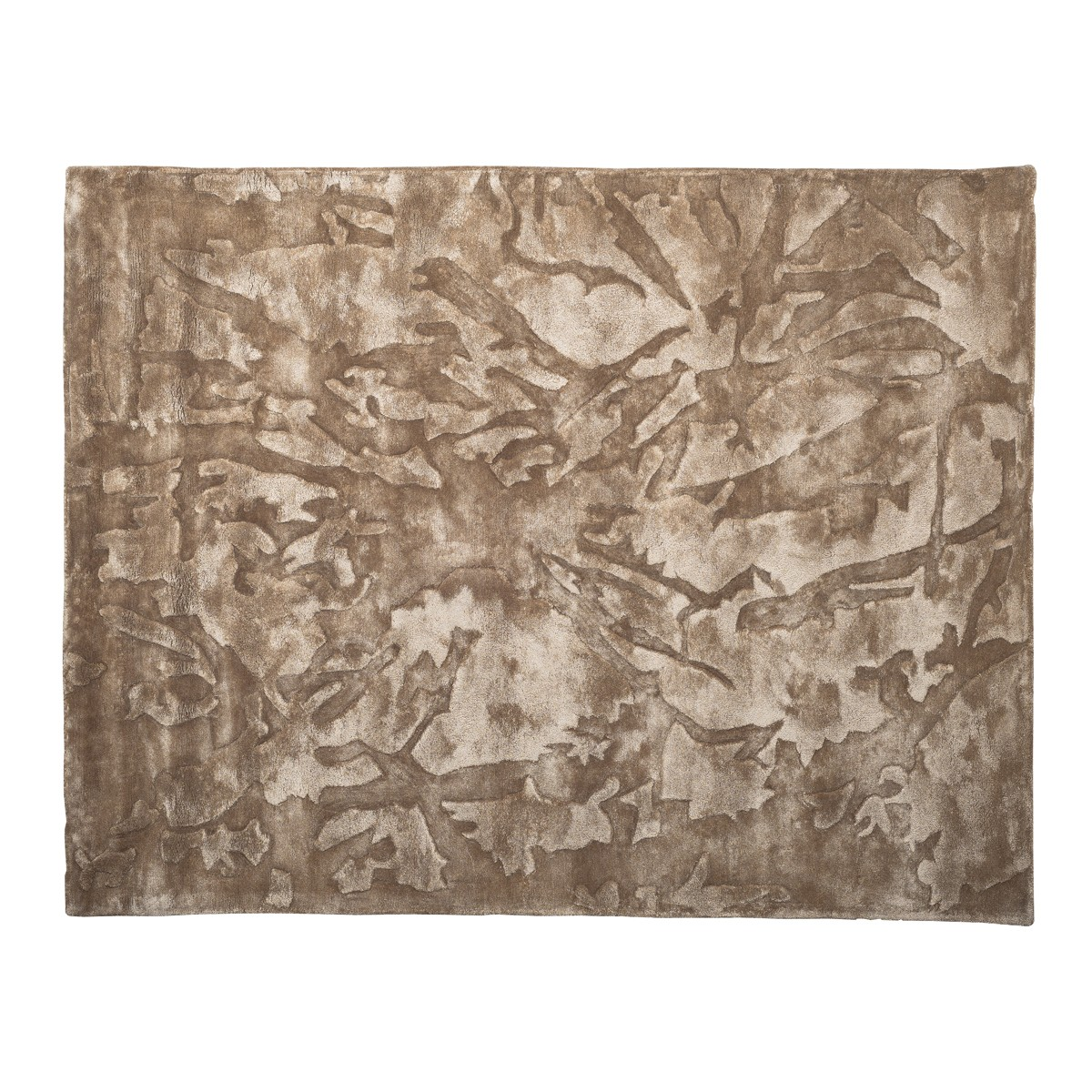 Fossil -  Glacier Rug  in Taupe